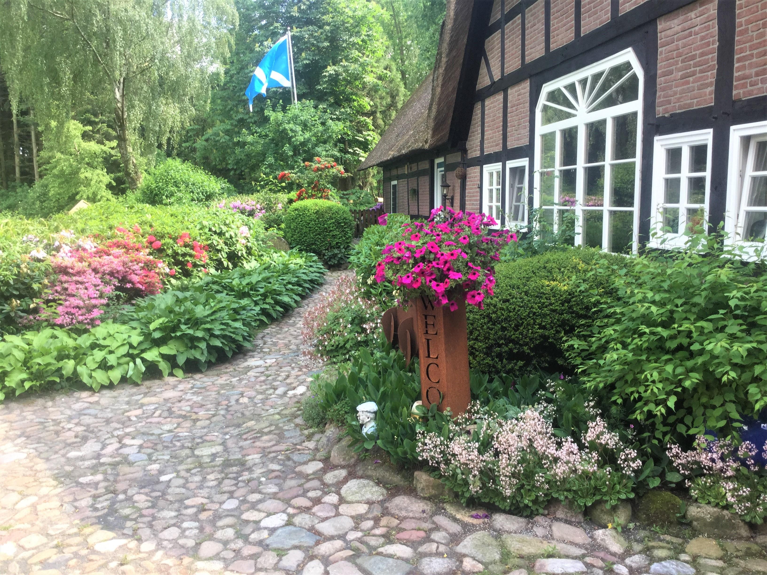 Vorgarten im Sommer